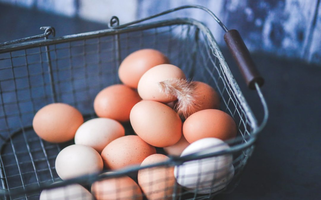 Egg Safety: Proper Handling of Eggs